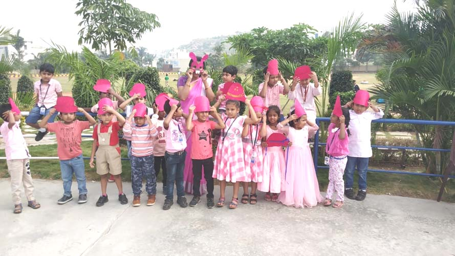 Pink Color Day (12)