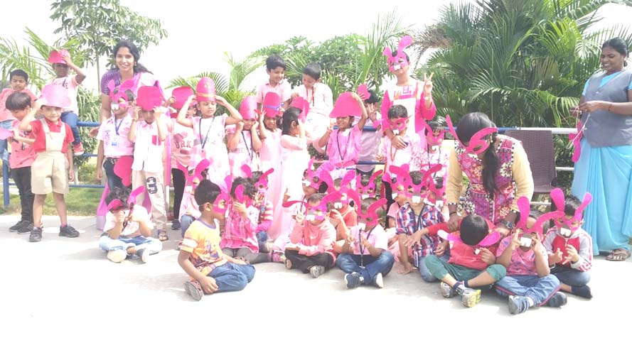 Pink Color Day (2)