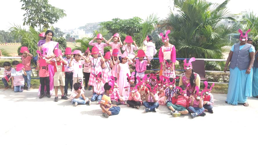 Pink Color Day (4)