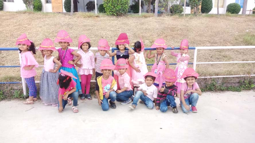 Pink Color Day (7)