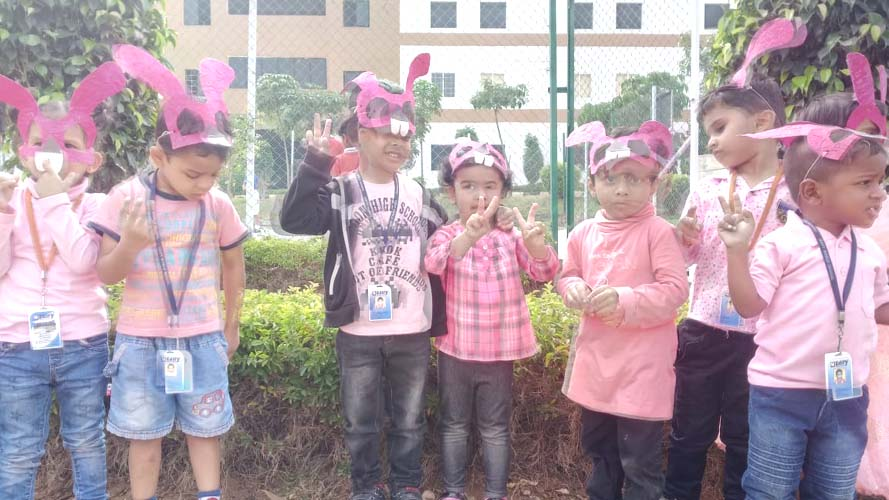 Pink Color Day (6)